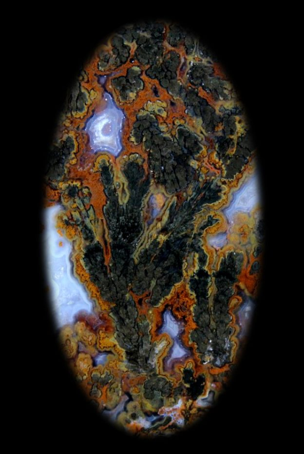 Photo of Black Plume Agate from west Texas