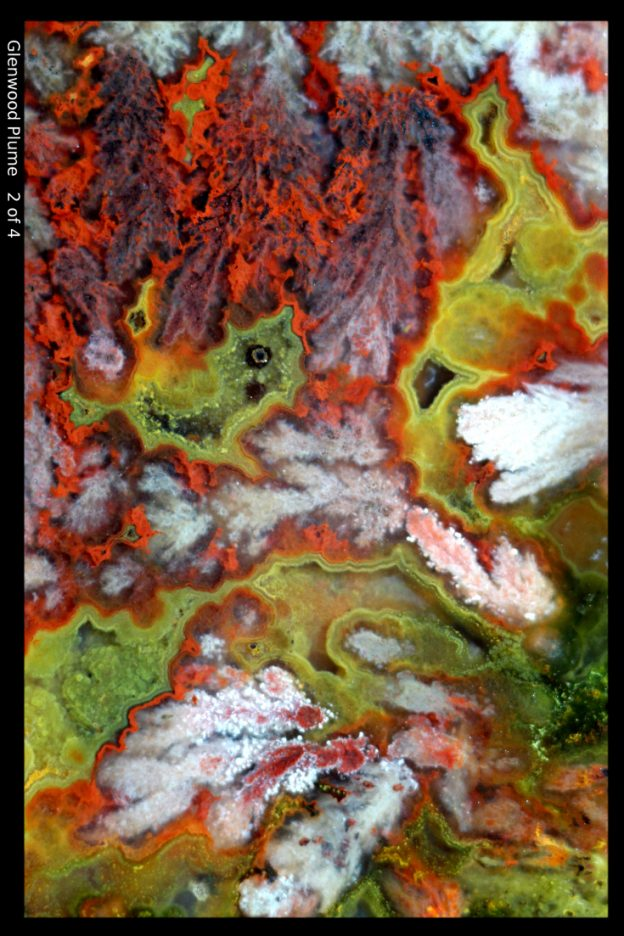 bright colored plume in macrophotograph of Glenwood, Utah, agate